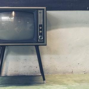 最近のお子さんはテレビを観ないのね~