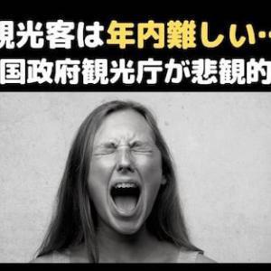 ◆観光客は年内難しい…◆タイ国政府観光庁の副長官が悲観的予測