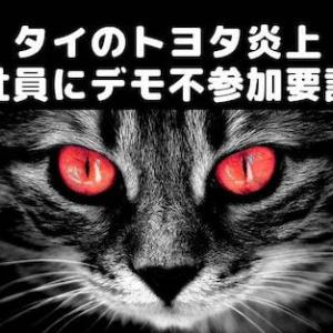◆タイのトヨタ炎上◆社員に反体制デモ不参加要請し炎上、不買運動か