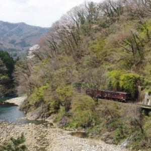 わたらせ渓谷鉄道 渓谷の春