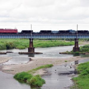 水戸線 鬼怒川橋梁のEF8181
