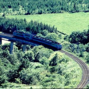 根室本線 なつかしの列車(209)九号川橋梁俯瞰