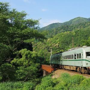 大井川鉄道 笹間川橋梁の21000系(2)