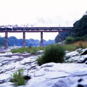 秩父鉄道 なつかしの列車(242)荒川橋梁のパレオ