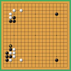 第44期囲碁棋聖戦 5!