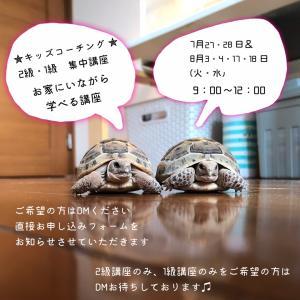 【2級・1級 短期取得講座】7月8月の募集〜♫