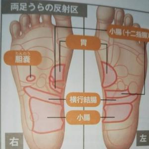 慢性胃炎 反射区マッサージ