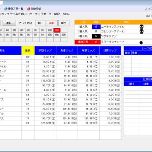 競馬ソフトにお任せ・11/24(日)の競馬計画