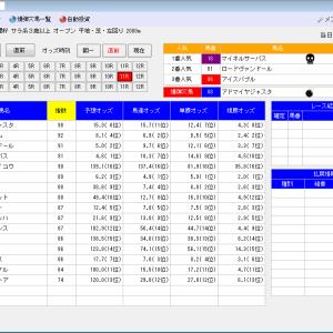 競馬ソフトにお任せ・12/7(土)の競馬計画