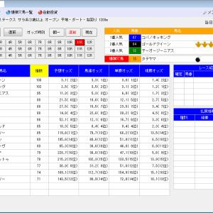 競馬ソフトにお任せ・12/8(日)の競馬計画