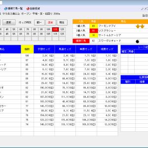 競馬ソフトにお任せ・12/22(日)の競馬計画