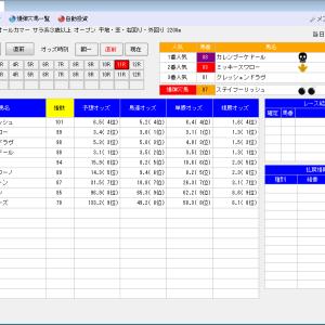 競馬ソフトにお任せ・9/27(日)の競馬計画