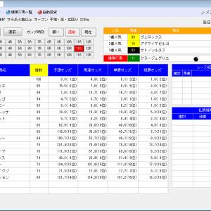 オート投票ソフトにお任せ・1/16(土)1/17(日)の競馬計画(結果)