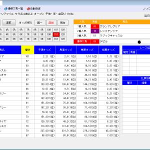 オート投票ソフトにお任せ・5/15(土)5/16(日)の競馬計画(結果)