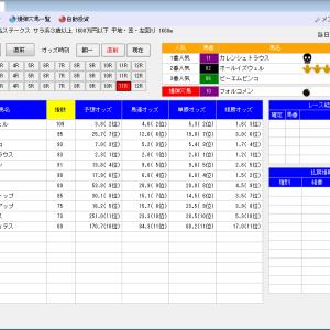 競馬ソフトにお任せ・6/12(土)の競馬計画