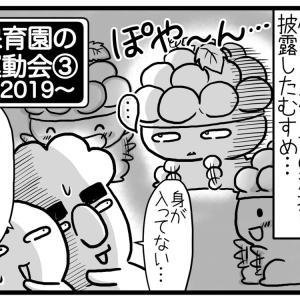 保育園運動会2019 第3話【+メディア紹介記事】