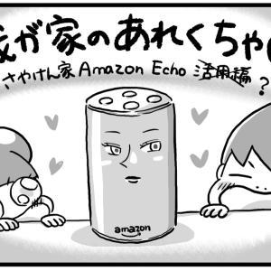 我が家のあれくちゃ〜活用編(?)②