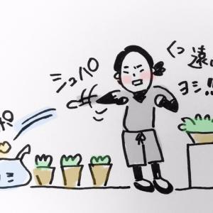 ツン珍マンガ「寒くなると庭に現れる忍者」