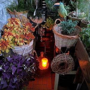 \お庭をライトアップ/ニトリやDAISOグッズで庭を照らして✧*。(◍˃̵ᗜ˂̵◍)ॱ◌̥