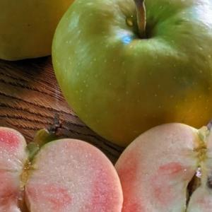 きれいな林檎
