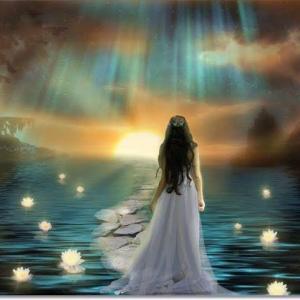感情の解放の先にある魂の在り方
