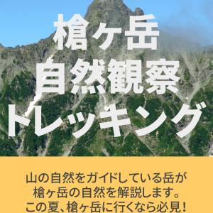 第2弾、富士山自然観察トレッキングを発売します♪