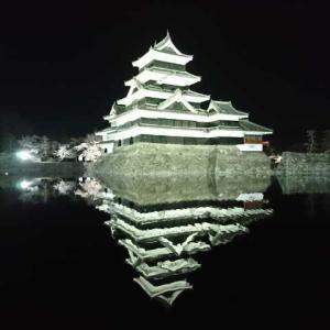 松本城の夜桜