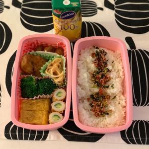 楽する火曜日 〜今日のお弁当〜今日のわんこ〜