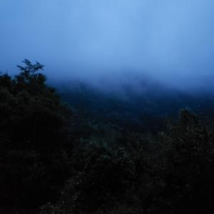 梅雨明け直前渓流