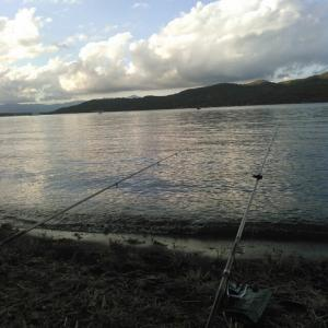 山中湖~野池釣行