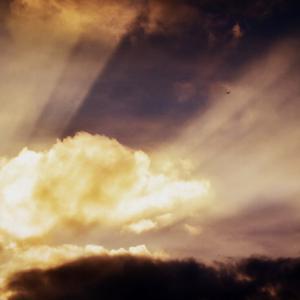 神の与え給うたバランス