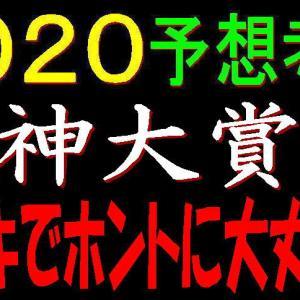 阪神大賞典2020競馬予想 キセキでホントに大丈夫!?