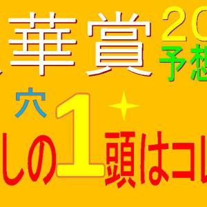 秋華賞2020消去法データ(過去10年)|マルターズディオサに【0.0.0.46】の危険データ!