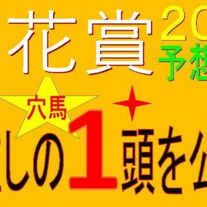 菊花賞2020競馬予想|過去10年【1.5.6.35】の穴馬はどうだ!?