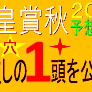 天皇賞秋2020【枠順確定】全頭解説|良枠を引いたのは?