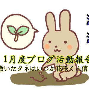 1月度ブログ活動月間報告 ~撒いたタネは水をあげて育てればいつか花開く~