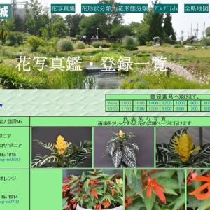 ホームページの改造 (No 2286 )