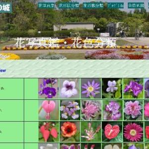花の色別分類 (No 2287)