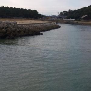新宮(湊川)でカレイ釣り