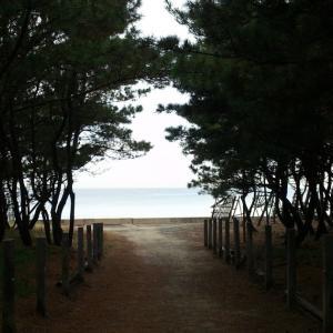 古賀サーフは花見海岸でヒラメvol.2