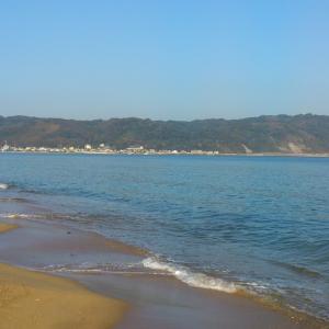 志賀島サーフでヒラメ狙いのハズが・・・