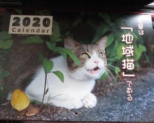 2020_かすやねこカレンダー(福岡県糟屋郡粕屋町)