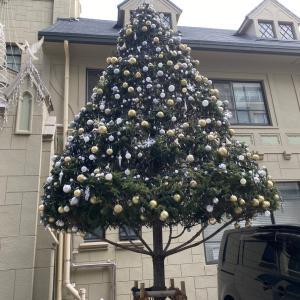 クリスマスイベントやりまーす!!!