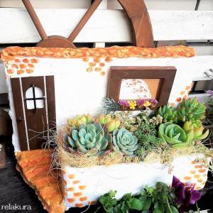 100円ショップの材料で多肉植物の寄せ植え  ~セメント・木箱・小物雑貨を使っておうち鉢作り~