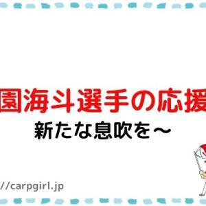 カープ小園海斗選手の応援歌(#51)2020年は飛躍の年
