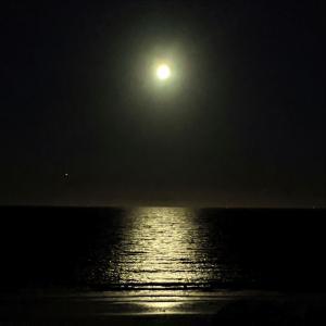 満月の海で月光浴を