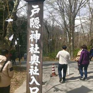 戸隠神社奥社へ行ってきました!