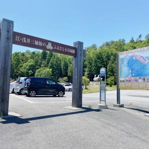 [滋賀県] 長浜市湖北を見下ろす 小谷城跡