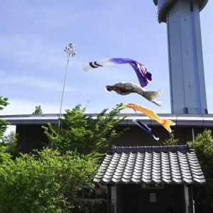 陸王杯第35回行田市鉄剣マラソン大会