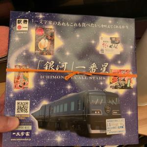【鉄】WEST EXPRESS 銀河でプレミアルーム 乗車記 ⑤【出雲市→大阪】(根雨駅)